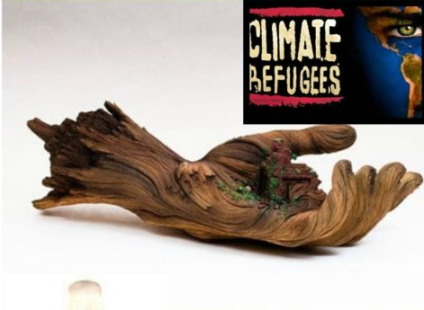 climate refugees aa